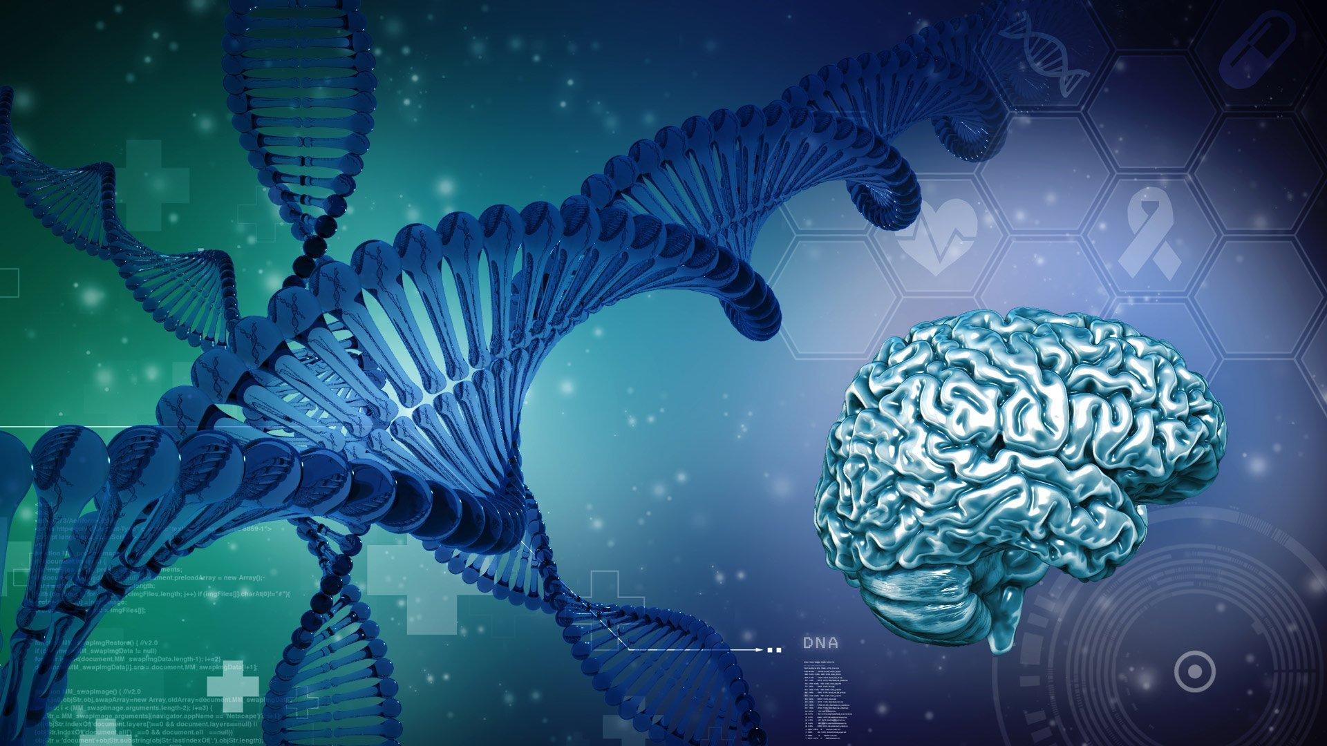 paul-dumbauld-bio-medical-illustration-and-animation